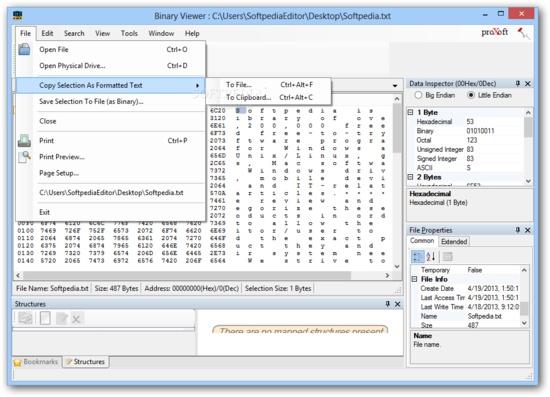 바이너리 파일의 데이터 보기 및 인코딩, 수정 유틸-Binary
