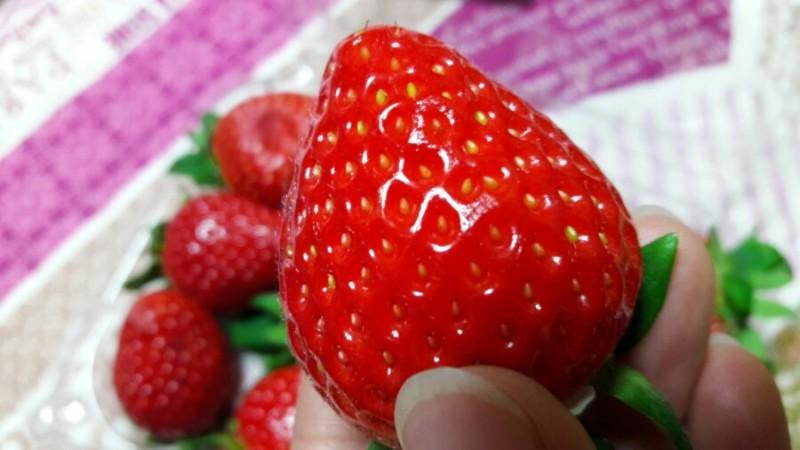 딸기100g� 칼로리가 27kcal�고 합니다.