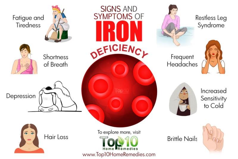 원주 철 결핍성 빈혈 Iron Deficiency Anemia 네이버 블로그
